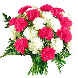 11 Carnation Bouquet Quantity In Basket None Price 44 99 See More Http Www Econnect Usa Com Carnation Bouquet Pink Flower Bouquet Carnation Flower