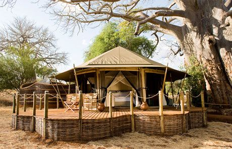 Sanctuary Swala is located in a secluded area of Tarangire National Park, arguably northern Tanzania's most interesting park, famous for the large herds of elephants and spectacular baobab trees.