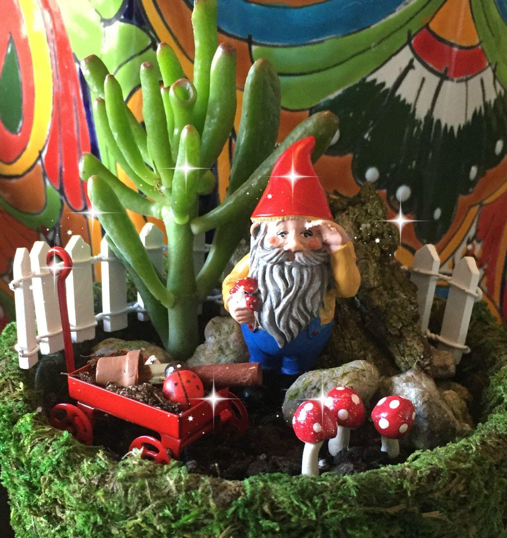 Fairy Garden Kit, Miniature Garden Kit, Gnome Garden Kit, Mini Gnome Kit, Miniature  Gnome Garden, Gnome Garden Kit, Deluxe Fairy Garden Kit
