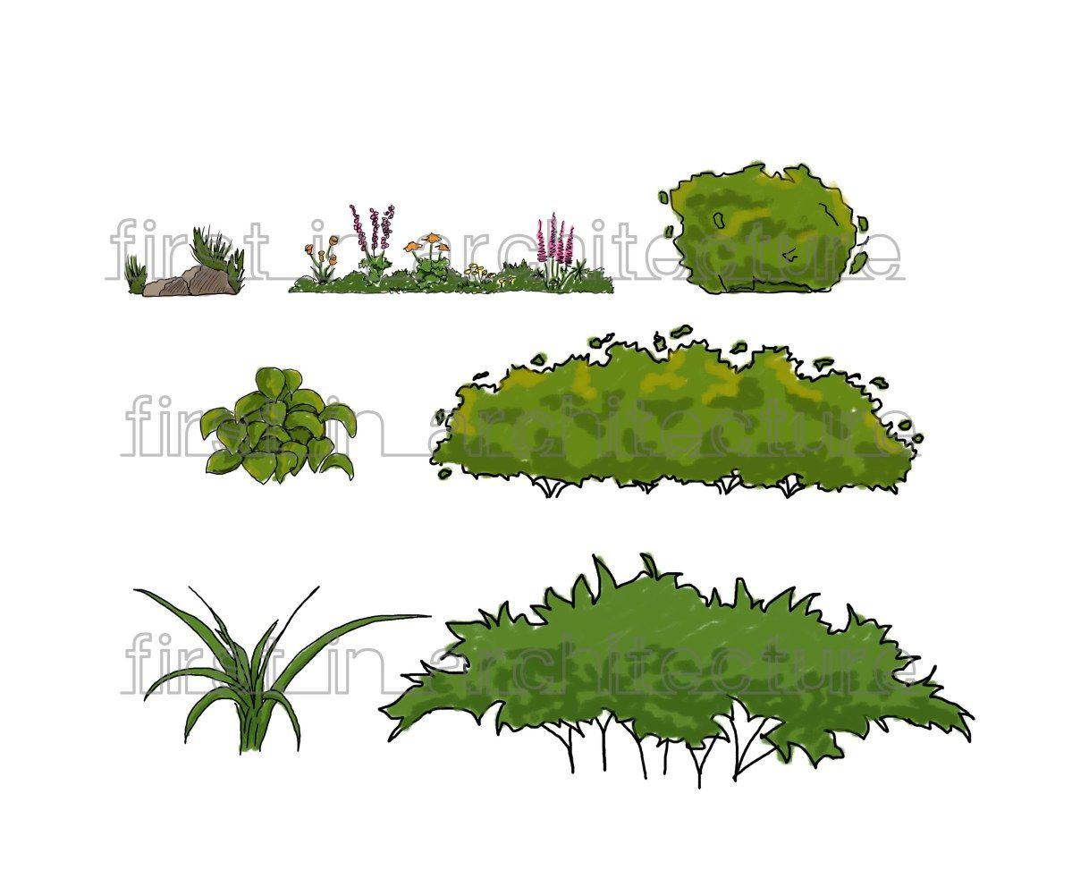Top view plants 02 2d plant entourage for architecture - Set Of Sketchy Plants And Shrubs For Sketchup These Are 2d Face Me