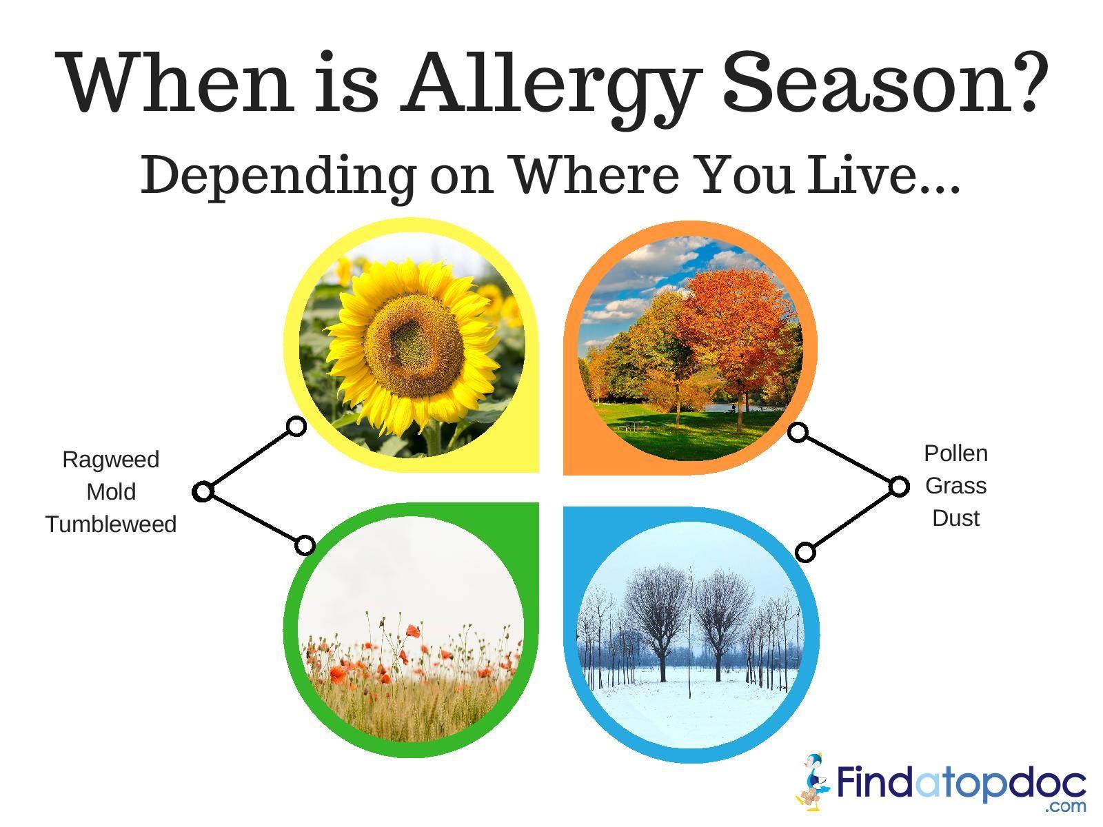 Allergens are all around us gunning to make us sneeze
