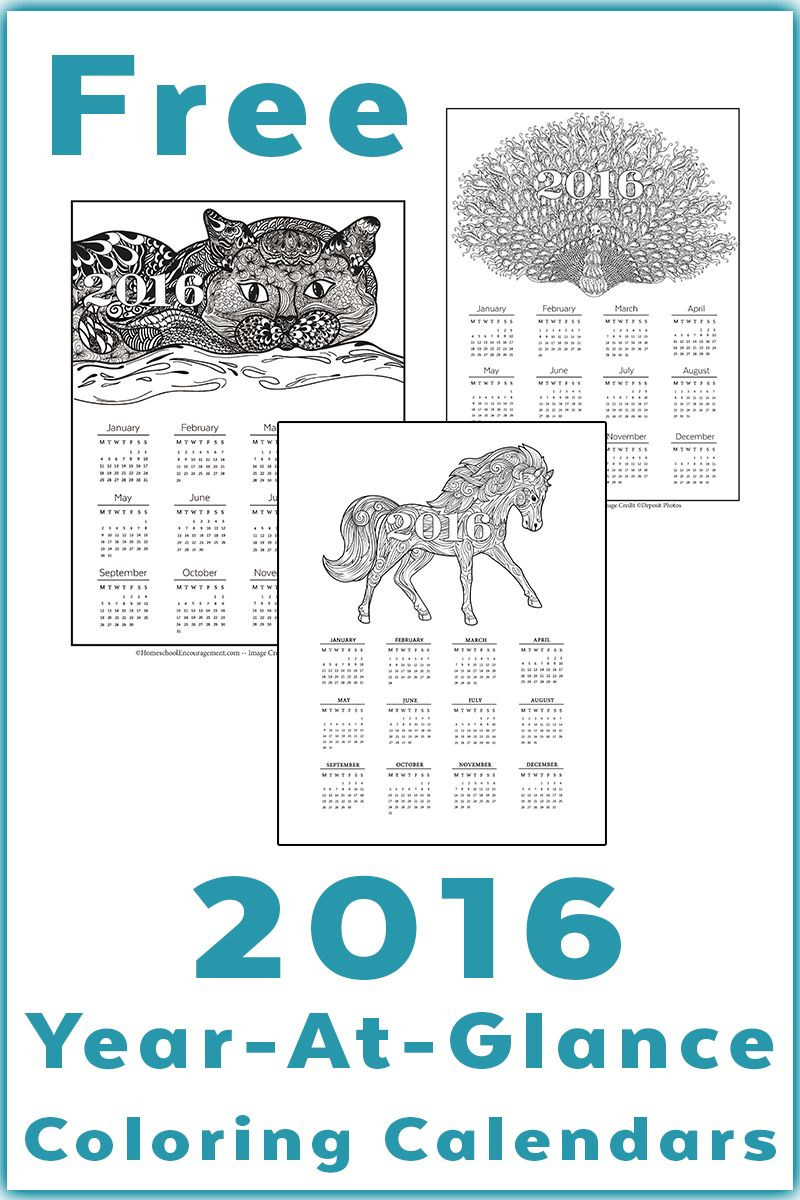 calendar printable year at a glance grownup coloring