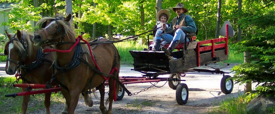 carriage-ride-1388701
