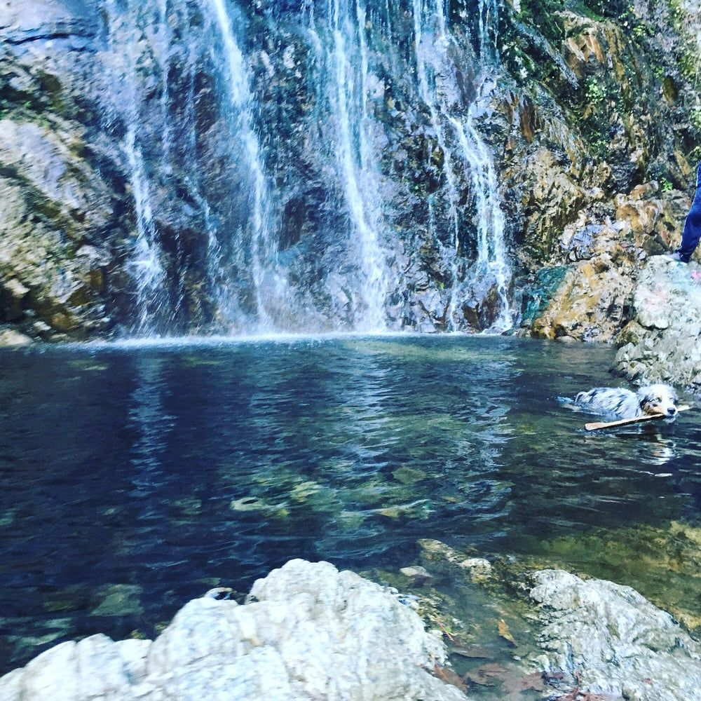 The Most Amazing Hiking Trails In The Inland Empire (With images) | Hiking trails, Hiking places ...
