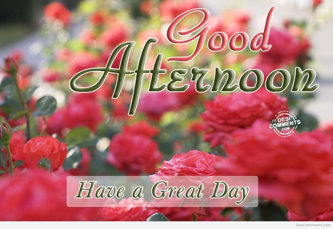 Have A Great Day Afternoon Greetings Good Morning Quotes Good