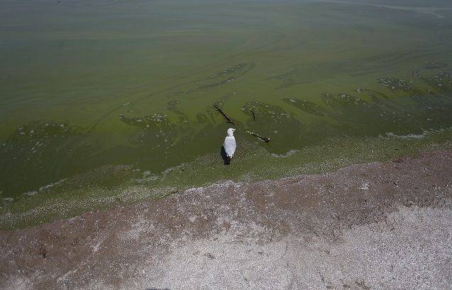 Will Lake Erie turn the tide?