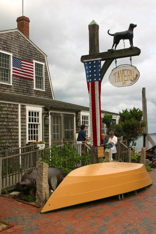 Black dog in vineyard haven Black dog cafe, Vineyard