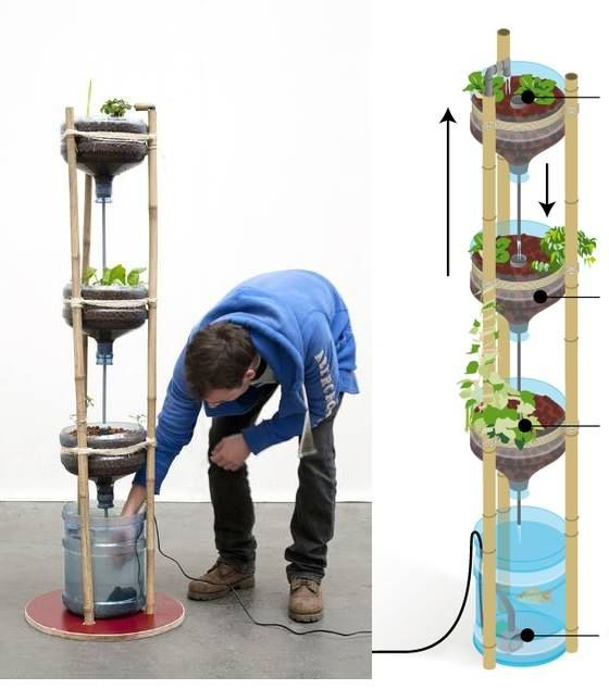 Pin By Kirk Robinson On Aquaponic