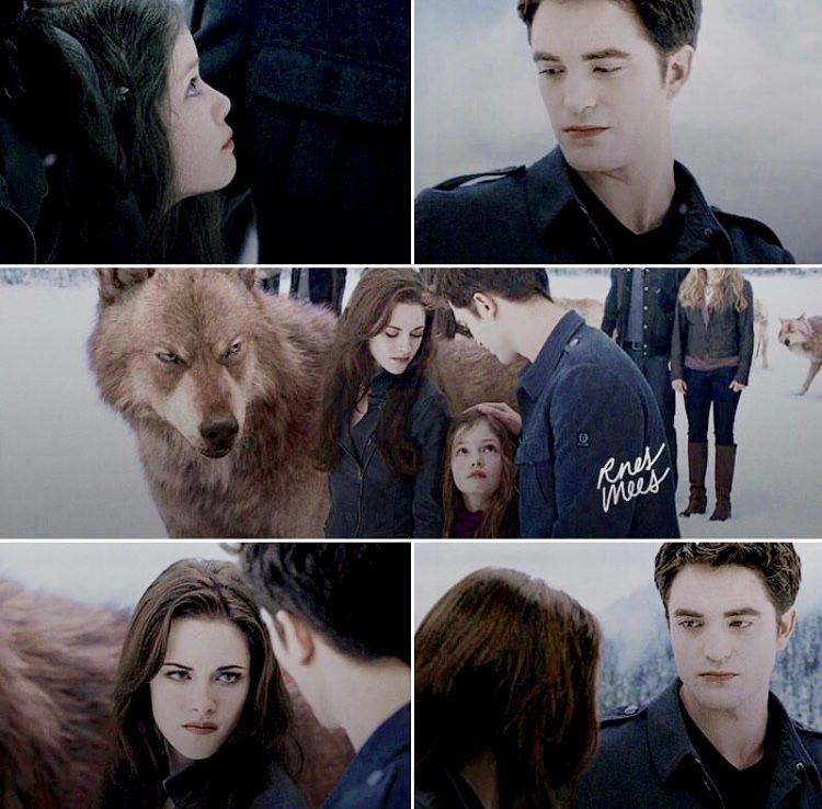 Pin by Sophia on Twilight Twilight memes, Twilight