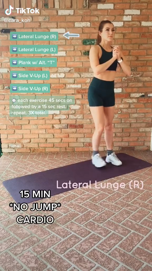 15 Minute No Jumping Cardio Workout No Equipment Needed Video In 2021 Slim Waist Workout Workout Videos Abs Workout