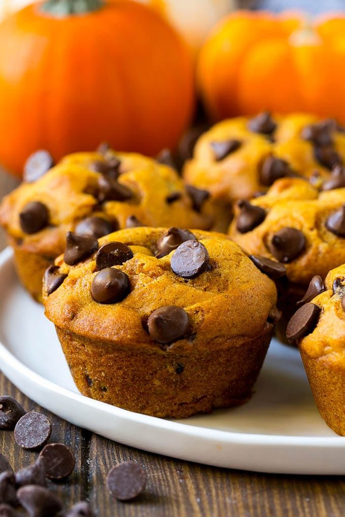 Pumpkin Chocolate Chip Muffins - Dinner at the Zoo
