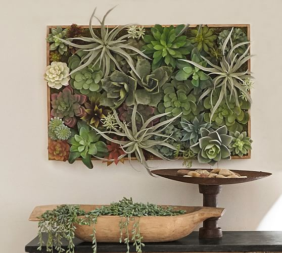 Succulent Wall Green Small Pottery Barn Succulent Wall Art Succulent Wall Succulent Wall Hanging