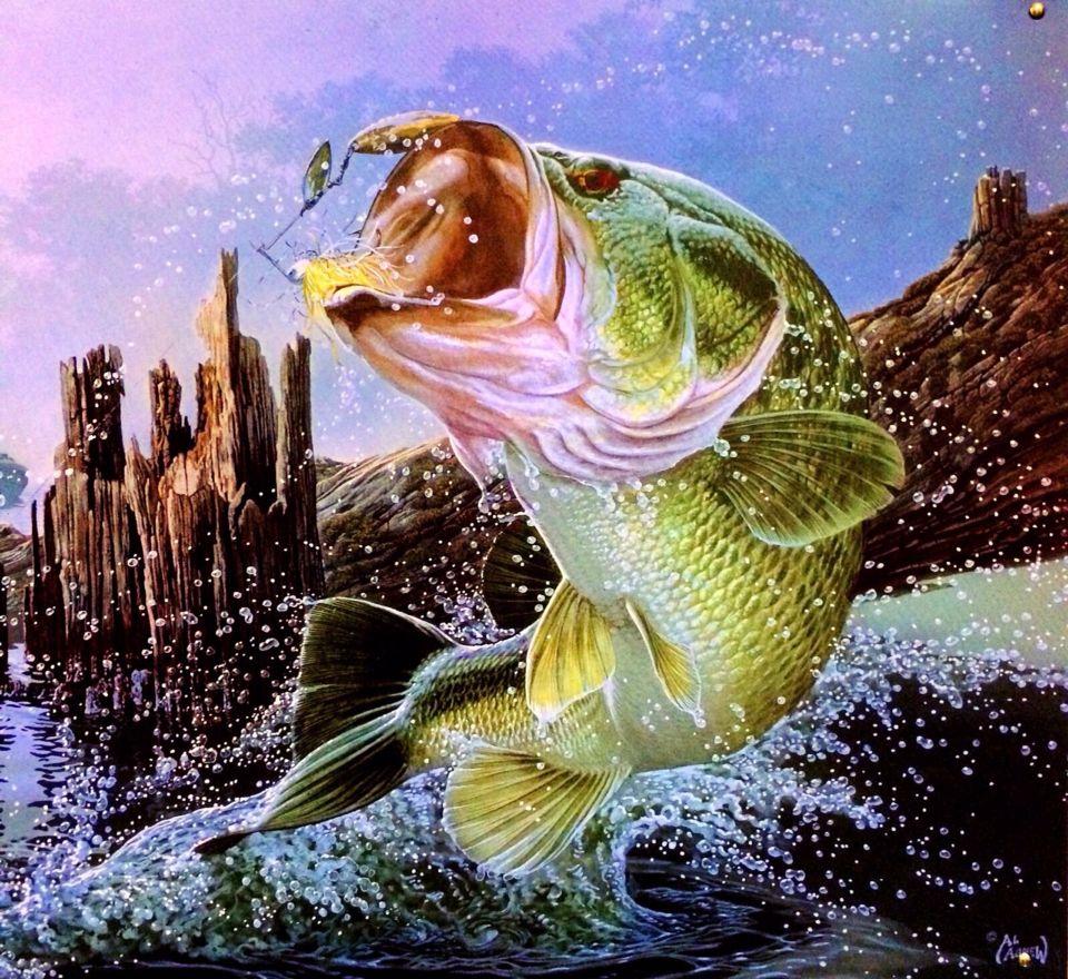 Pin By Torey Rhodes On Fishing Fish Wallpaper Fish Painting Cool Fish