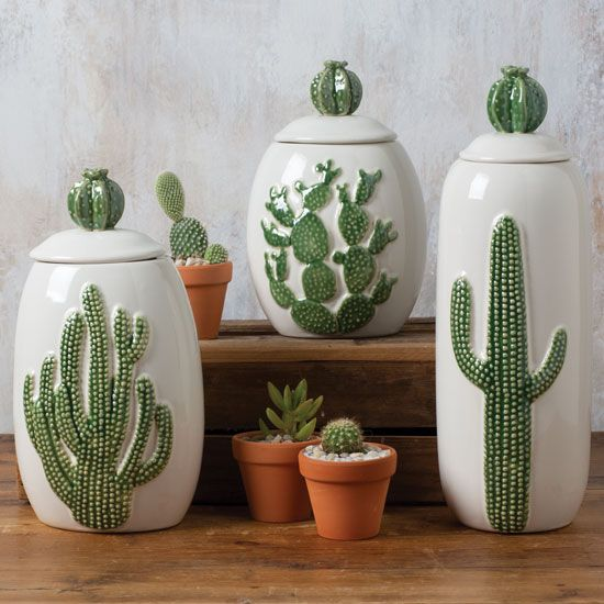 Ceramic Cactus Canister Set of 3