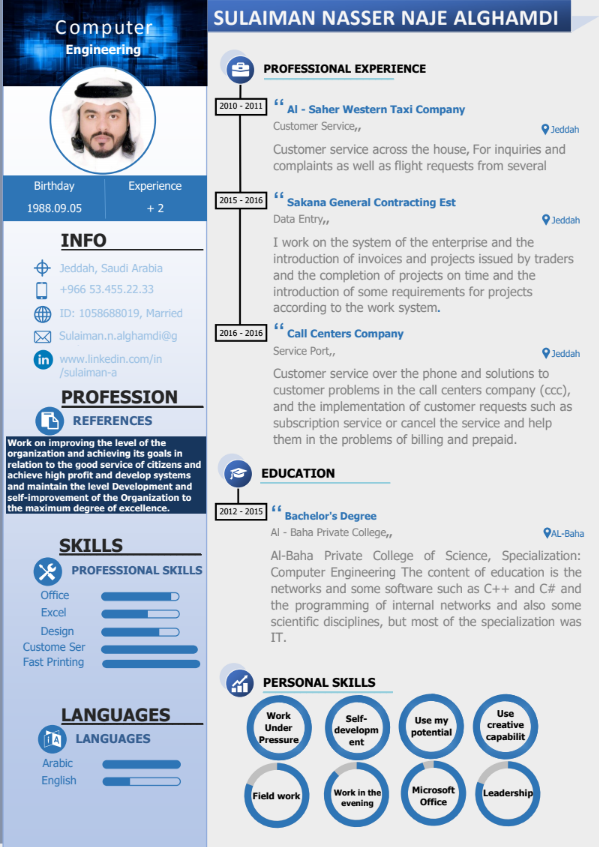 professional cv in english template