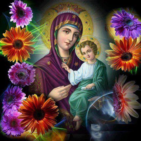 madonna of the zinnias