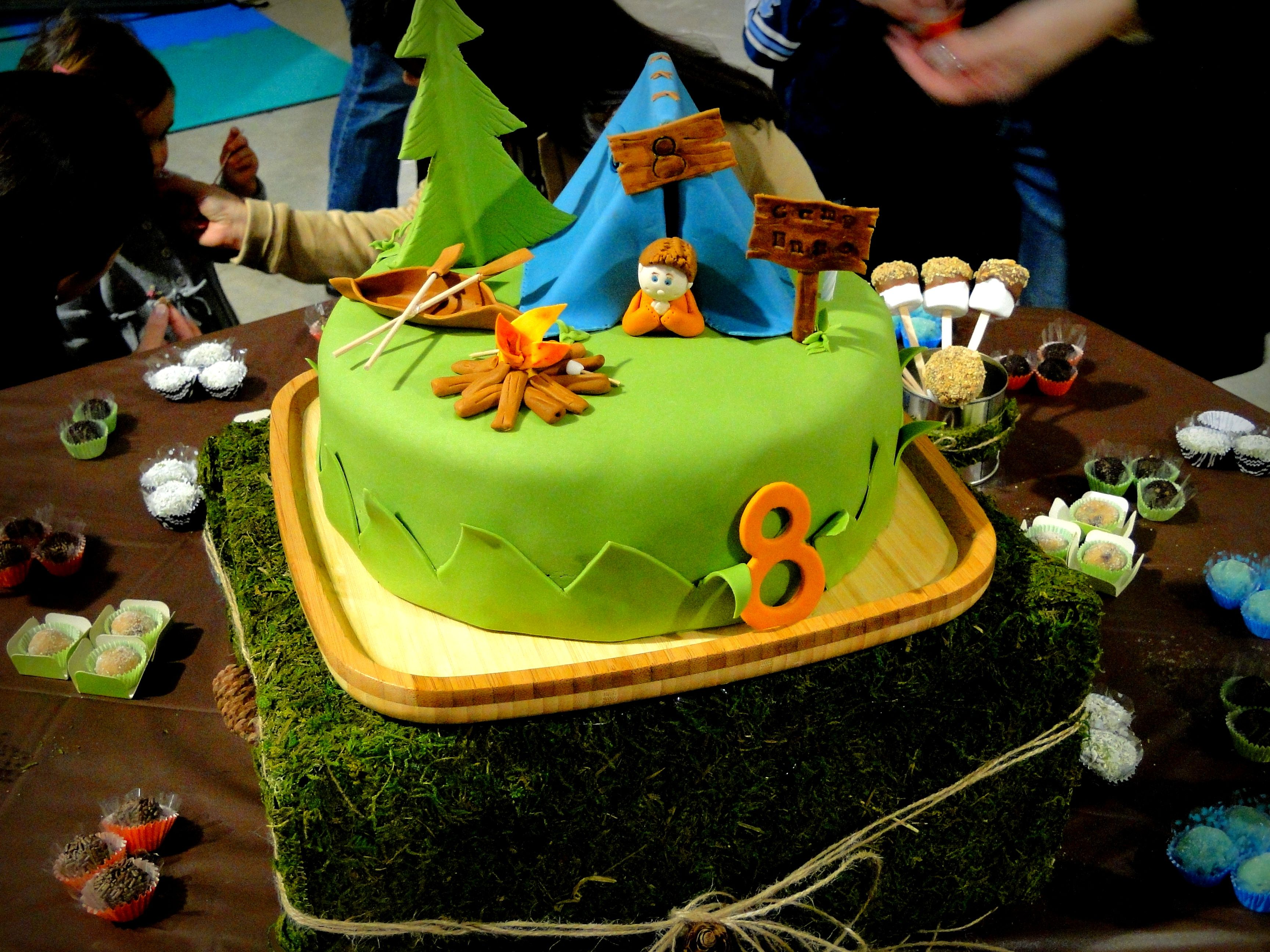 camping cake camp out cake kids party tent fire cakes