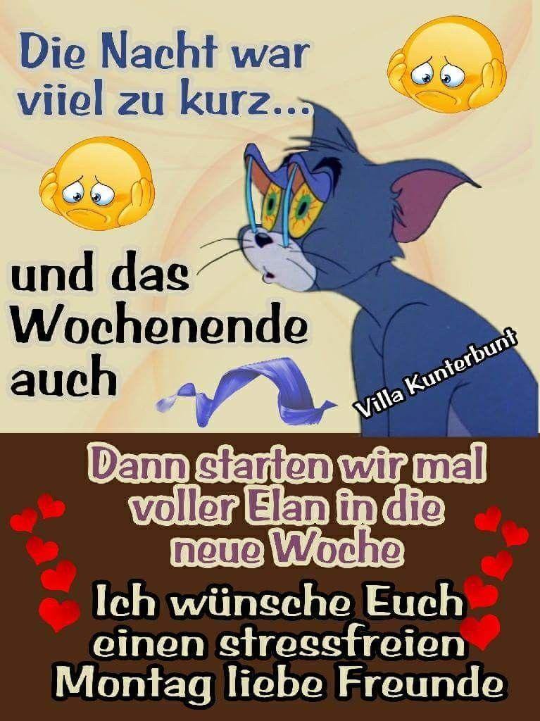 Witzig Tagen Pinterest Guten Morgen Lustig Bilder Montag Und