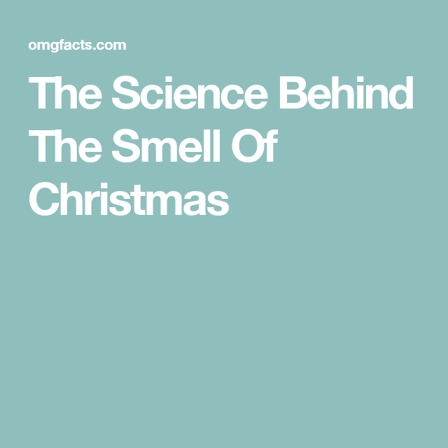 The Science Behind The Smell Of Christmas