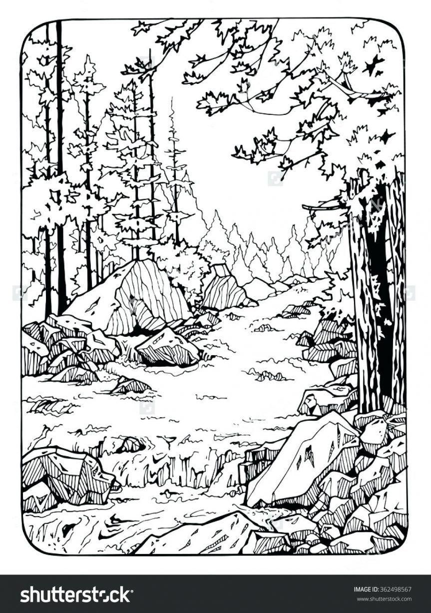 42 Coloring Page Nature Coloring Pages Nature Coloring Book Art Fall Coloring Pages