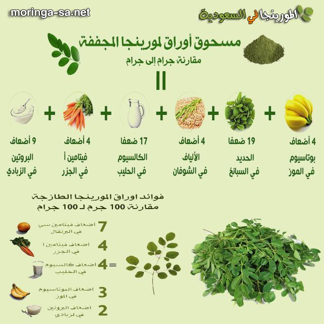 فوائد اوراق المورينجا Moringa Big Biceps Workout Herbs