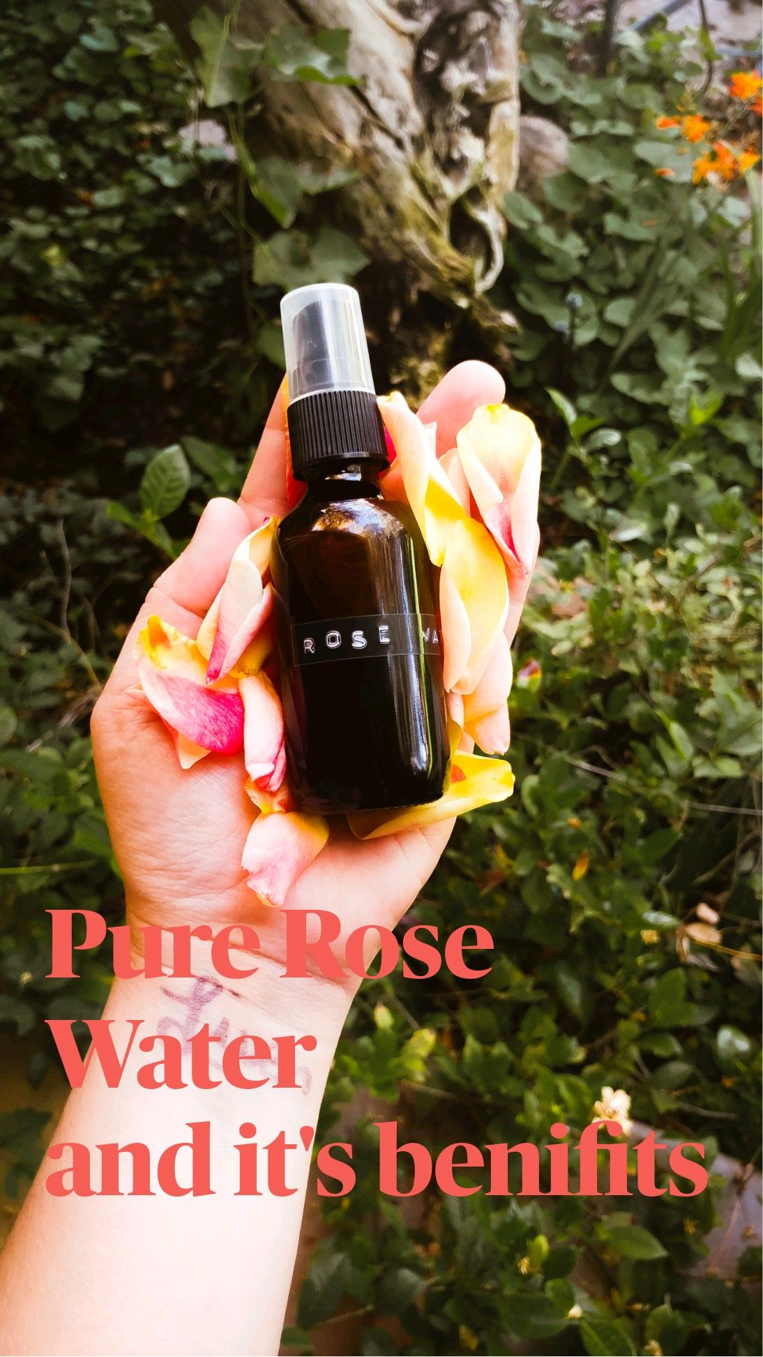 Pure Rose Water  and it's benifits
