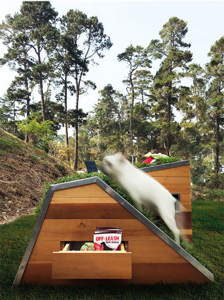 A Modern Dog House With A Green Roof Modern Dog Houses Green