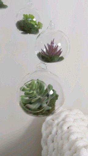 Photo of Succulent Terrarium Baby Mobile