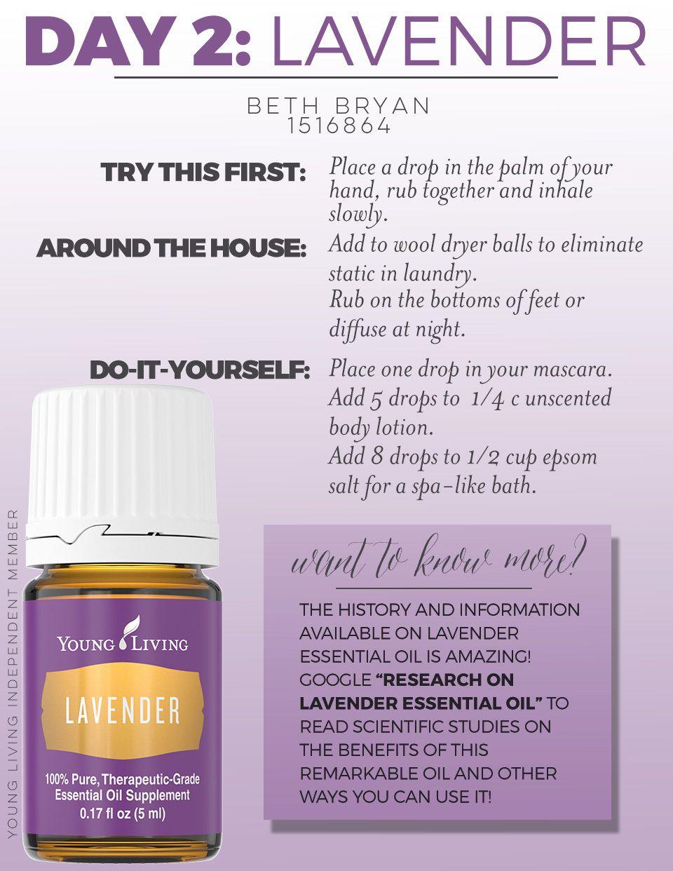 4 Ways to Use Lavender 4 Ways to Use Lavender new picture