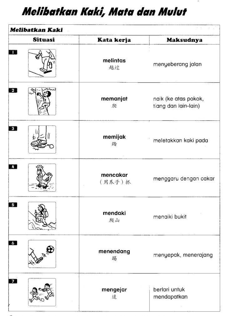 最新 4年级国语kata Kerja动词大全集 Malay Language Grammar And Vocabulary Multi Sensory Learning