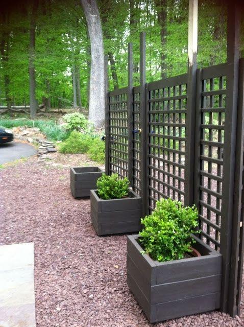Living privacy screen trellis diy movable privacy screen for Vertical garden privacy screen