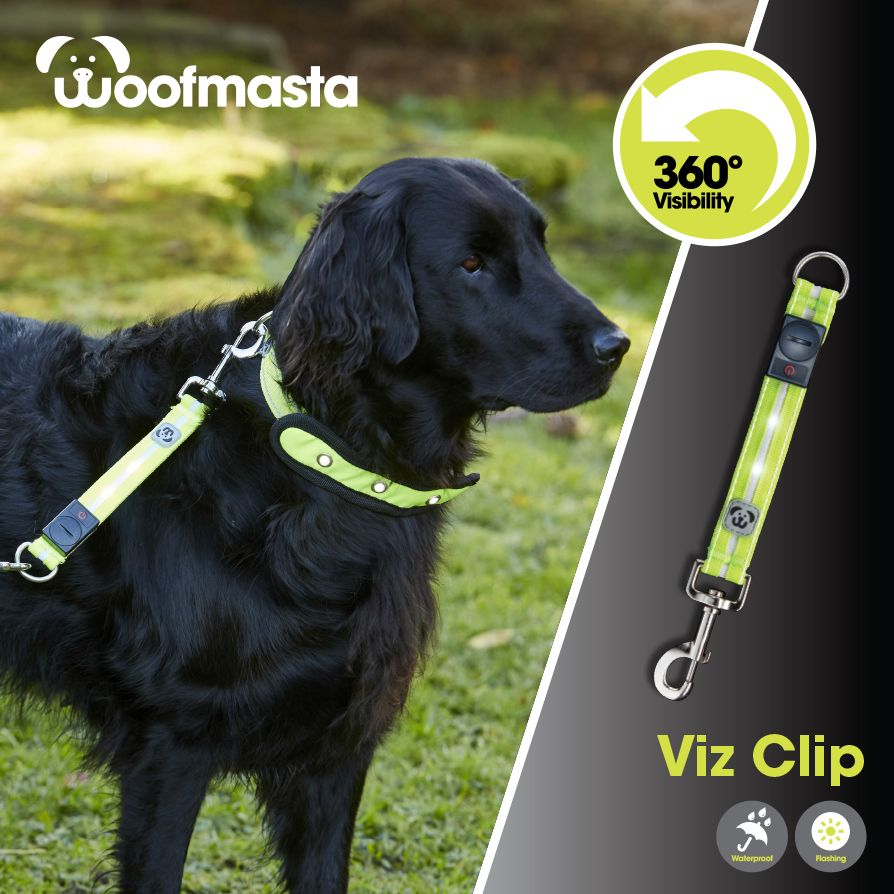 Clip and go with this #HiViz webbing lead extension with integrated #LED light.  Choose from three different lighting sequences!