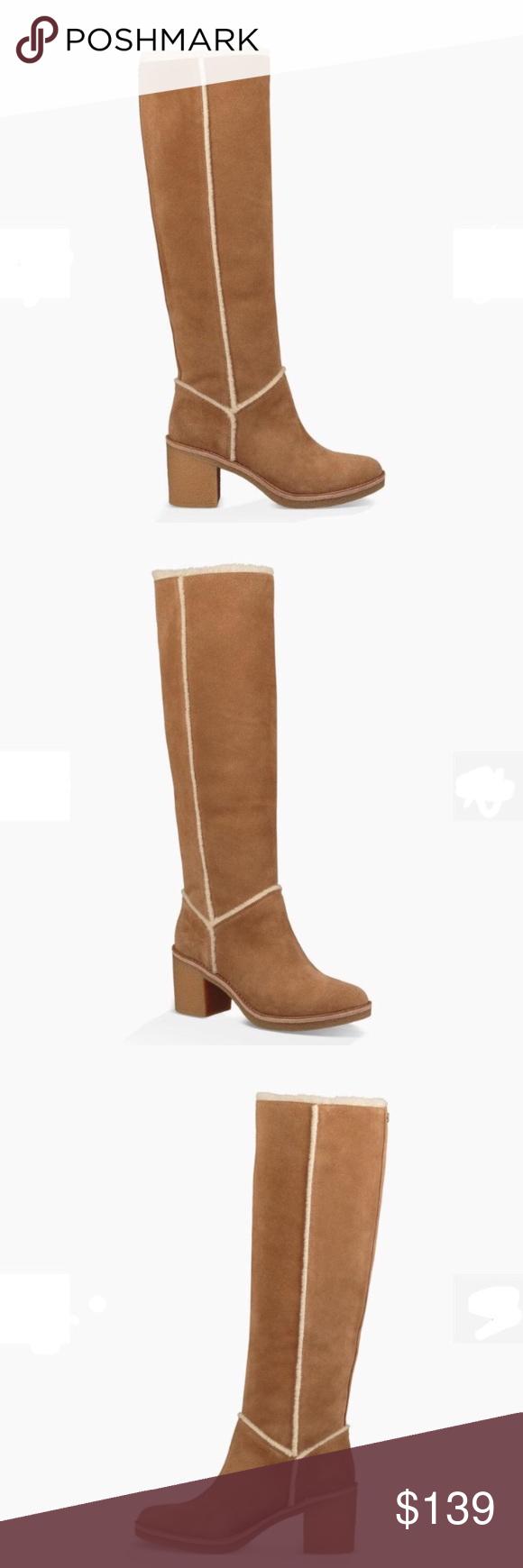 a72713e6596 ❤️New Ugg Kasen Tall Suede Chestnut Boots Sz 5.5 ❤️New Ugg Kasen Tall Suede