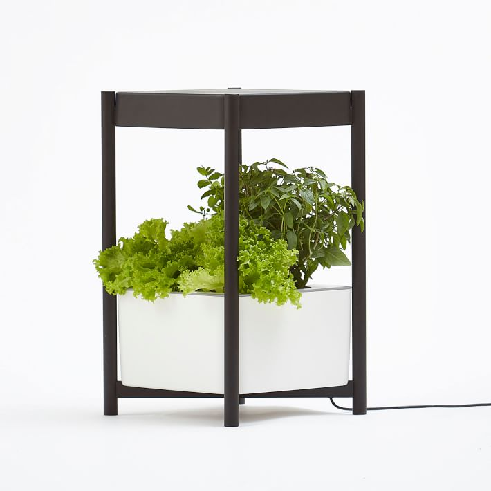 Miracle-Gro® Twelve™ Indoor Growing System | West Elm