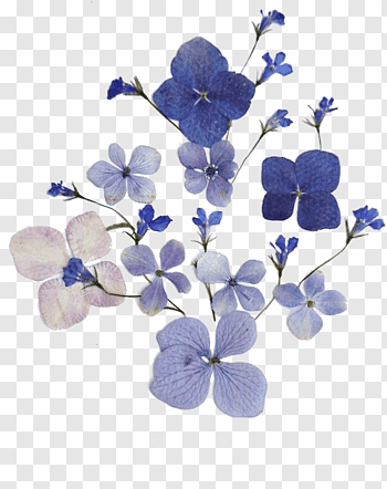 Purple Aesthetic Resources Blue And White Flowers Png Blue Flower Png Purple Aesthetic Transparent Flowers
