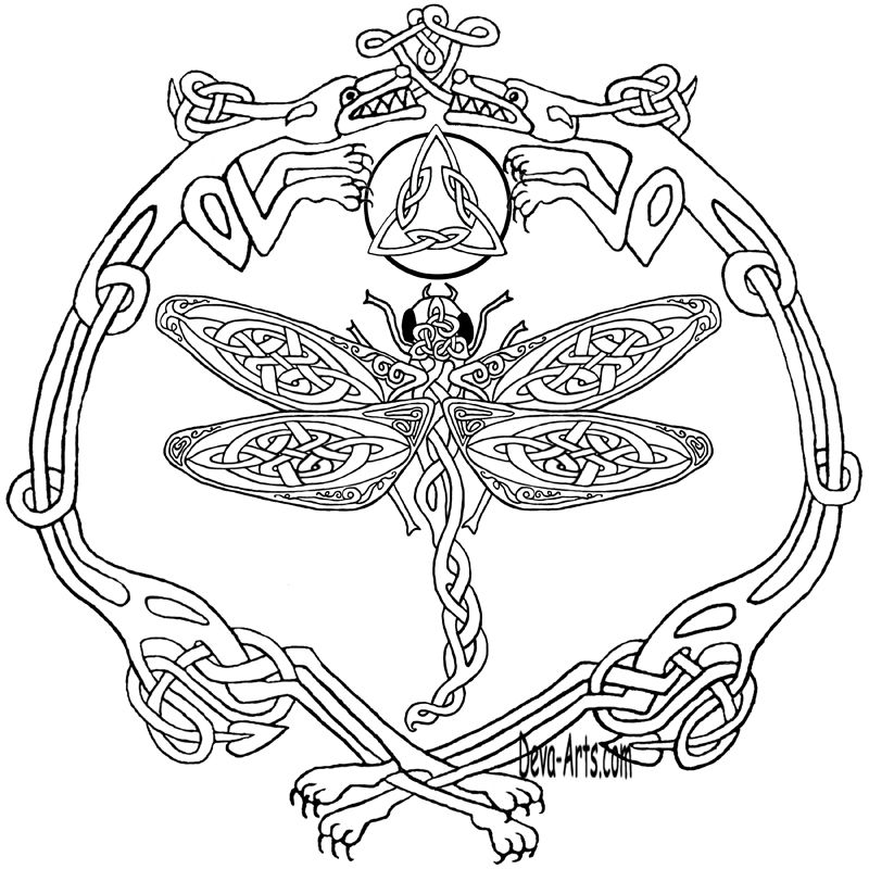 Celtic Knotwork Double Dragons And Dragonfly Outline Celtic Coloring Celtic Patterns Coloring Books