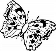 Dogface Butterfly Coloring Page Bing Images Butterfly Coloring