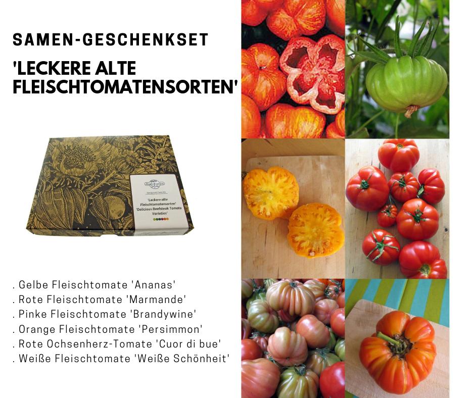 Solanum Lycopersicum 6 Leckere Alte Fleischtomaten Sorten In Einem Hubschen Geschenkset Samenfestes Saatgut Ohne Gent Tomaten Fleischtomate Tomaten Sorten