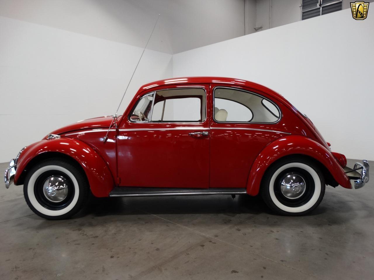 used 1965 volkswagen beetle for sale beetles pinterest beetles volkswagen and vw. Black Bedroom Furniture Sets. Home Design Ideas