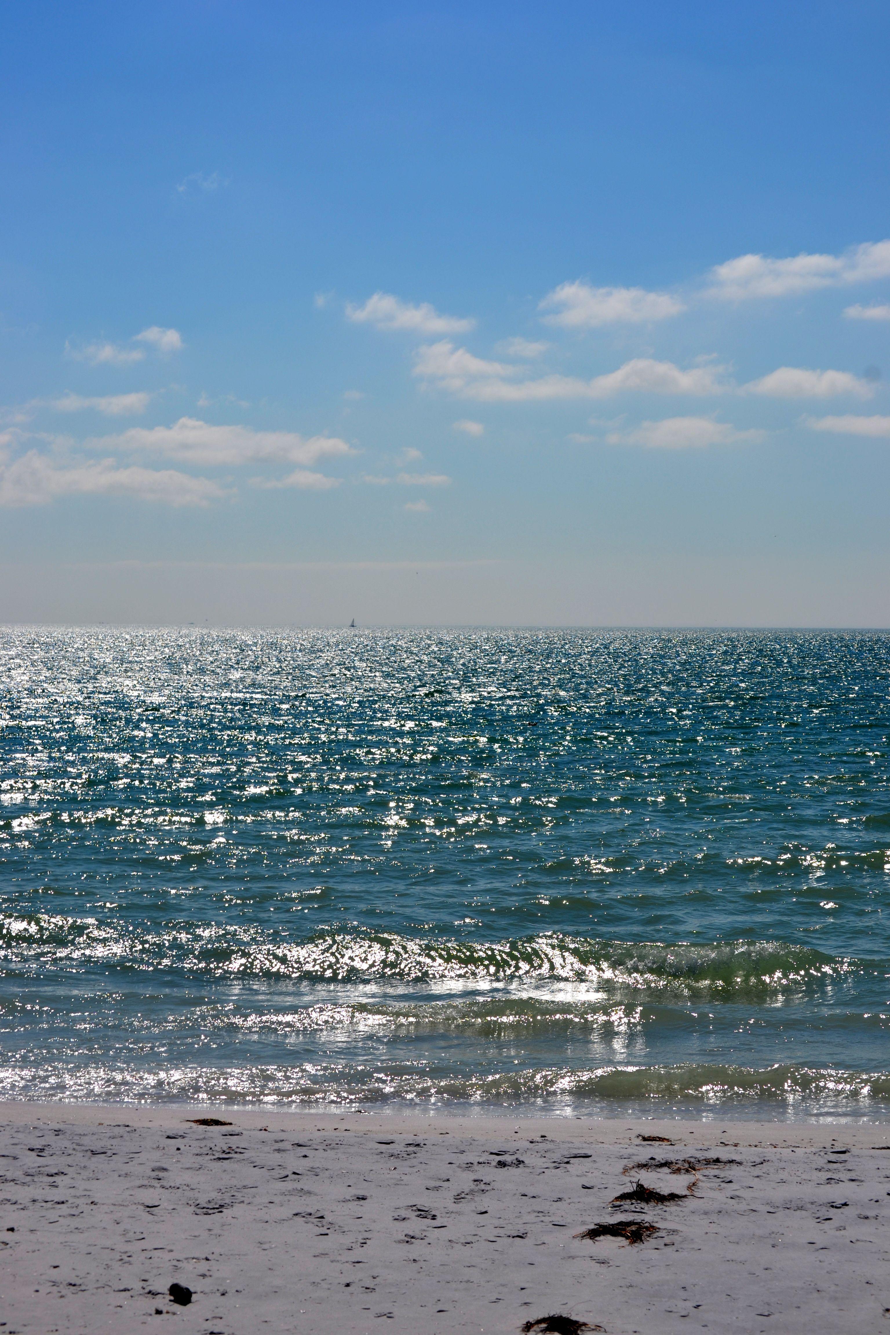 Oasis Beach Dunedin Florida