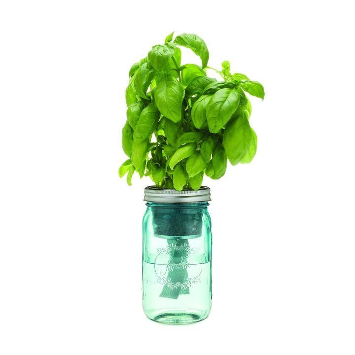 herb garden jar kit mason jar herbs self watering on indoor herb garden diy wall mason jars id=55089