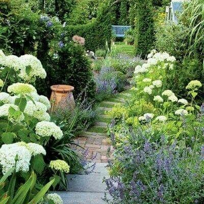 Lovely. white and blue border. So pretty. Mine will soon be out I can't wait..#cottage #cottagestyle #gardenborders