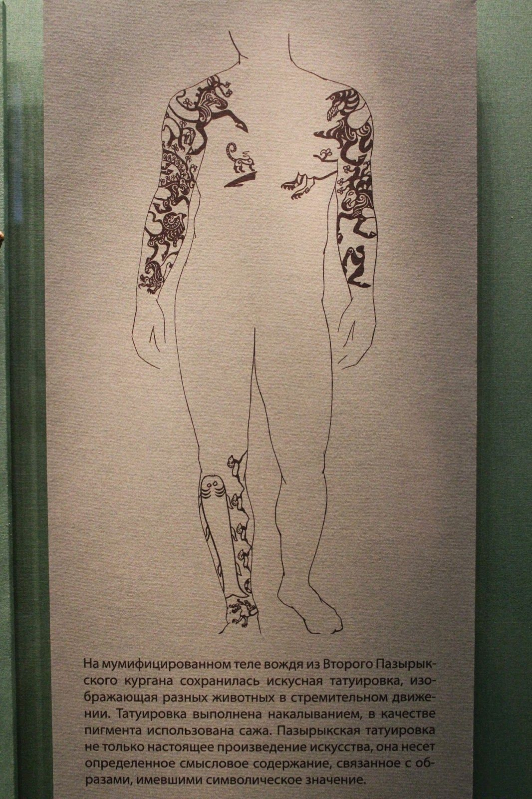 Canadian scientist decorated the body with tattoos from the body of a 2500-year-old mummy of the Scythian