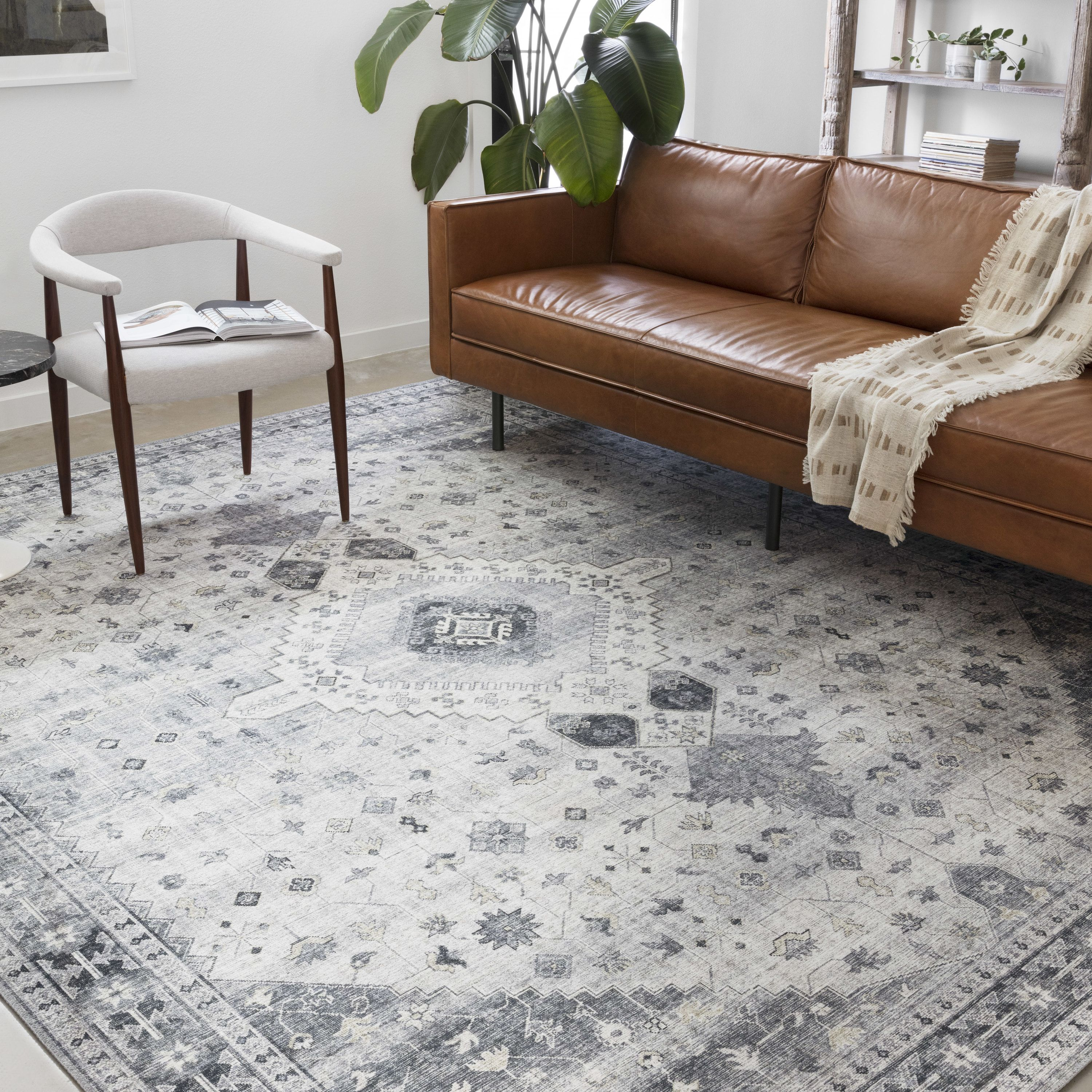 Sky 02 Color Silver Gray Size 3 6 X 5 6 Area Rugs For