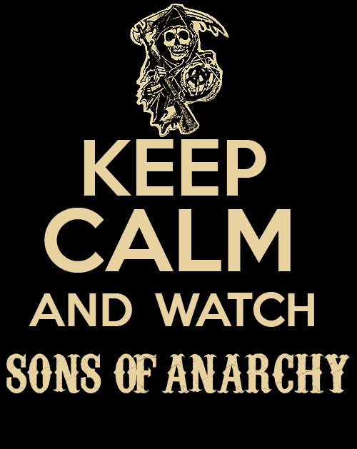 Anarchism Stands For Liberation Sons Of Anarchy Anarchy Quotes Anarchy