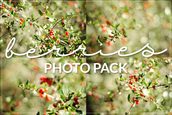 Berries Photo Pack by Coral Antler Creative on Creative Market