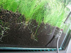 Aquarium Substrates Explained Aquarium Soil Planted Aquarium