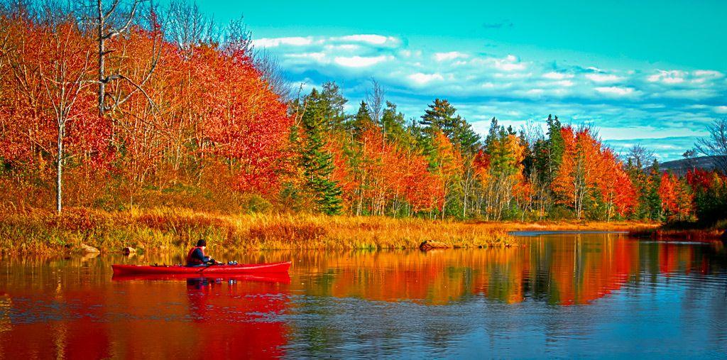 Fall Foliage Maine Google Search Maine Pinterest