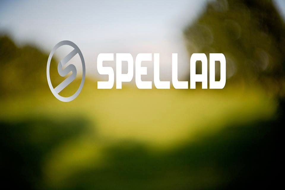 Spell Advertising LLC Blog: Flat Fee PPC