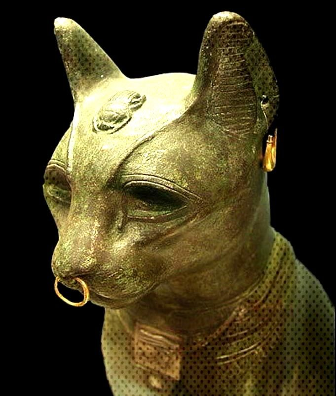 The Veneration and Worship of Felines in Ancient Egypt | Ancient Origins